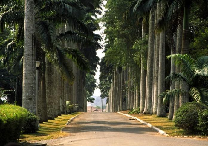Aburi Botanical Gardens Touringghana Com