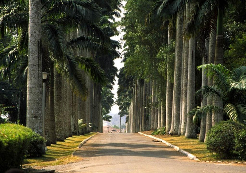 aburi-gardens